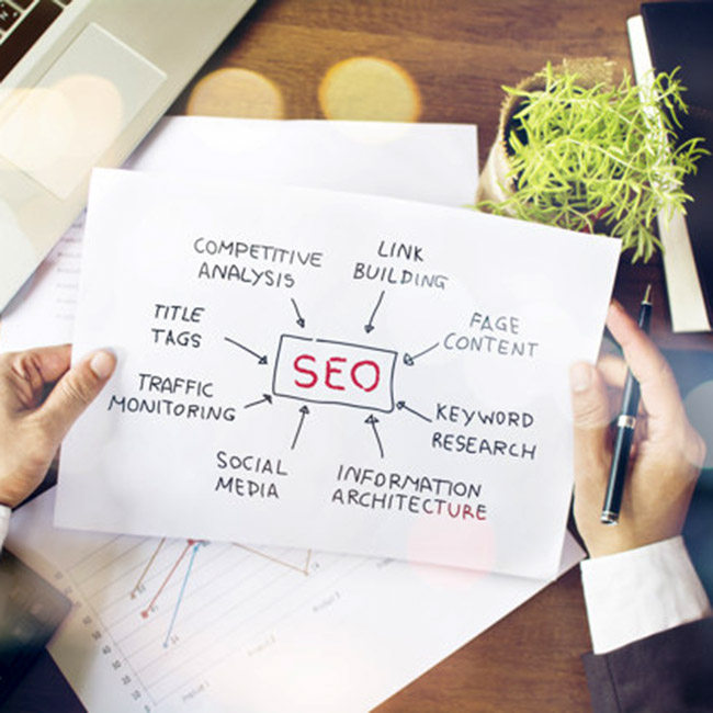Business Amplifier si occupa di Search Engine Optimization